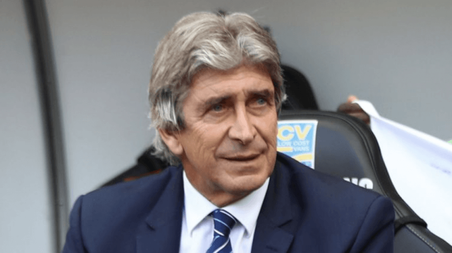 New West Ham manager Manuel Pellegrini is looking to bolster his squad