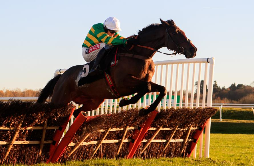 Unowhatimeanharry could be set for another crack at Stayers' Hurdle in March