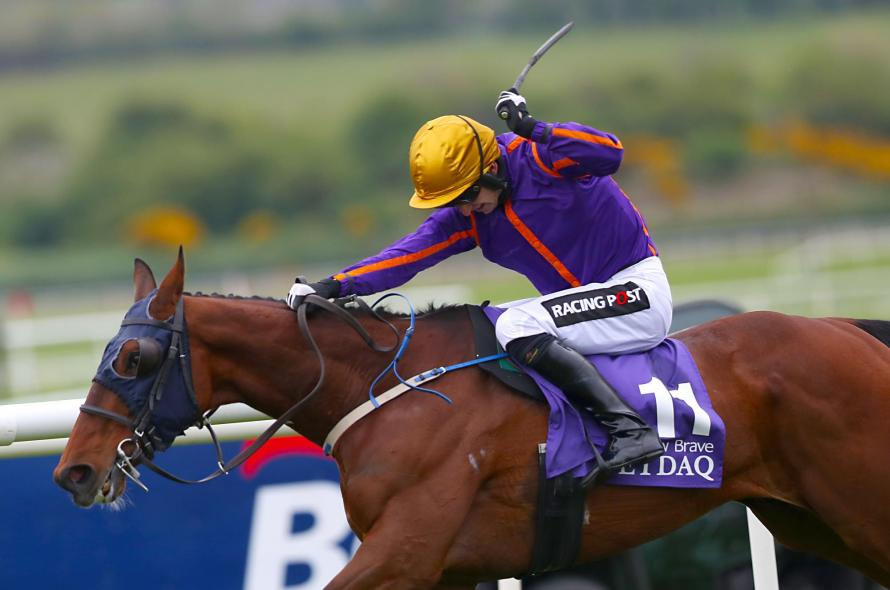 Wicklow Brave Declared For the Yorkshire Cup