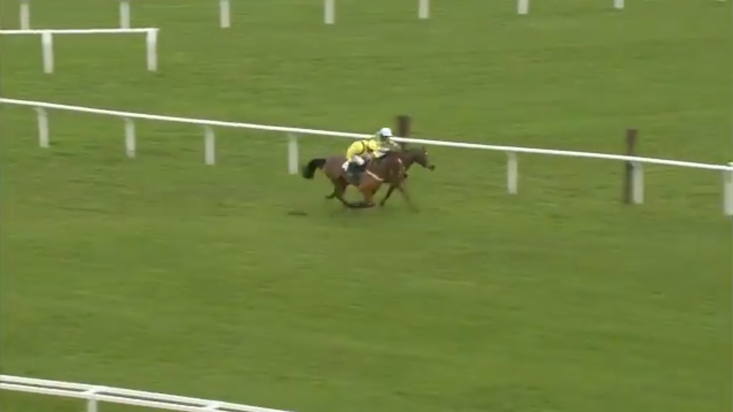 Lostintranslation and Defi Du Seuil served up a thrilling finish to the Dipper Novices' Chase