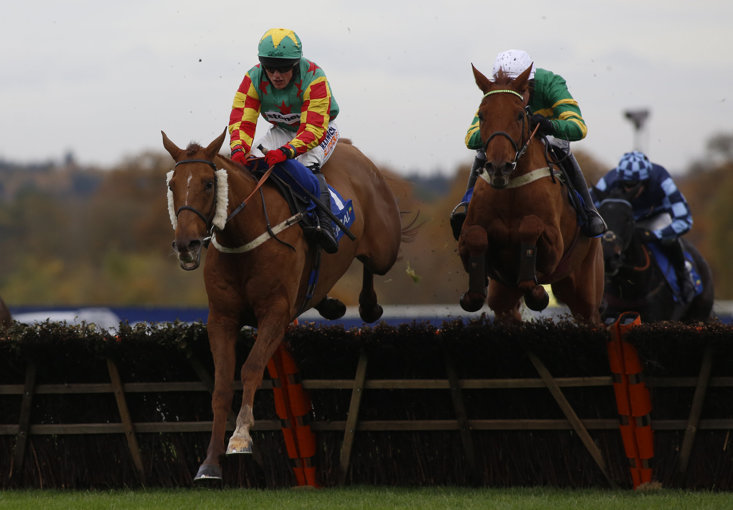 Lil Rockerfeller's career over fences has been put on hold