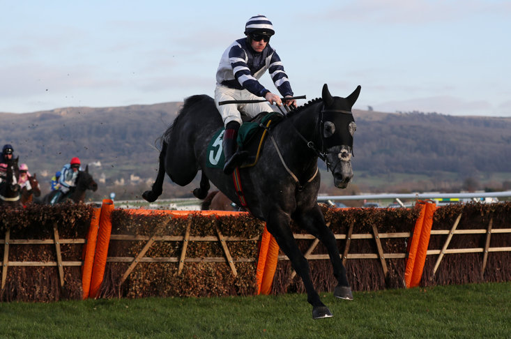 Al Dancer is a leading contender for the 2019 Supreme Novices' Hurdle