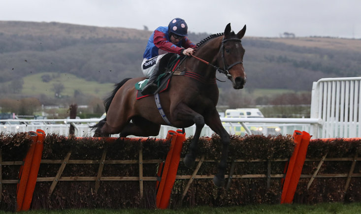 Paisley Park is the one to beat in the Stayers' Hurdle on Thursday