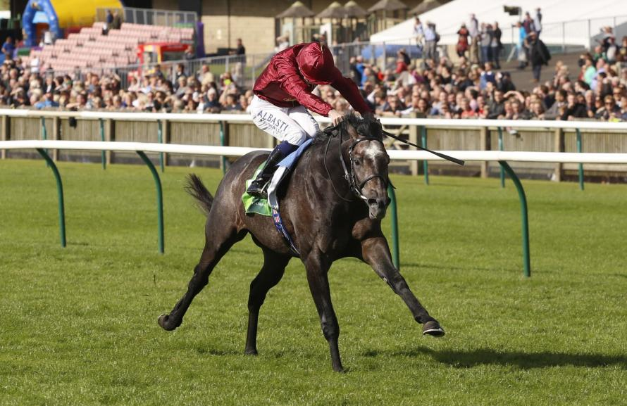 Roaring Lion is the market favourite for the Dante