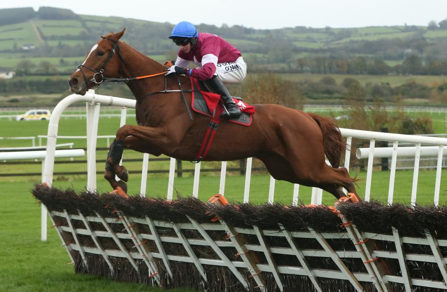 Samcro: Gigginstown and Elliot's latest hurdling star