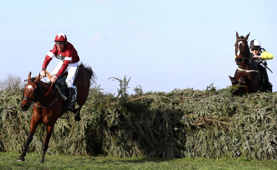 Winner of the Grand National Tiger Roll (left) with Pleasant Company (right) battling on