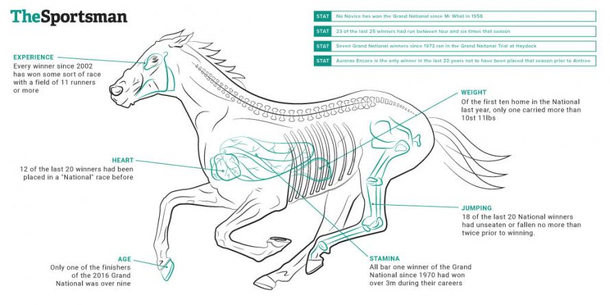 The Anatomy Of A Grand National Winner