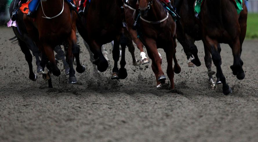 Runners skip over the artificial surface at Kempton