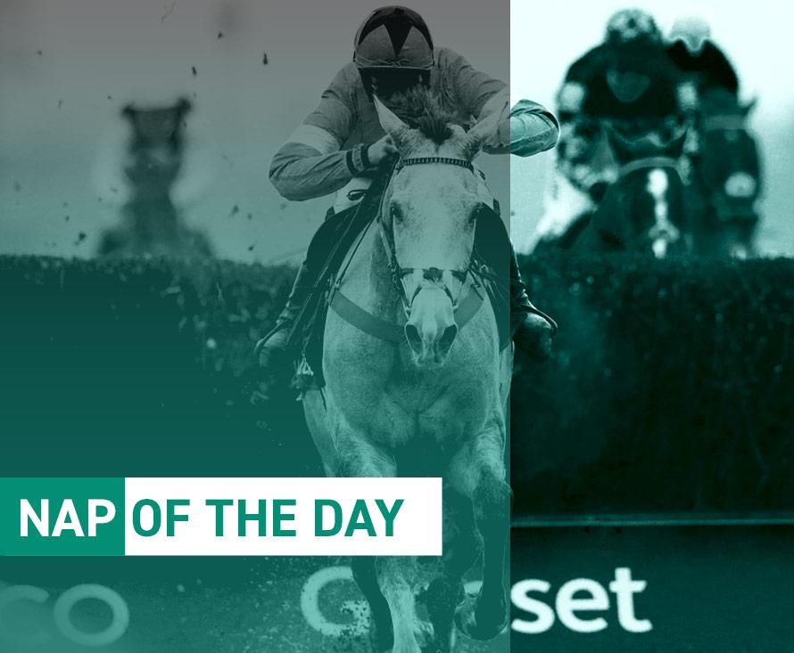 nap of the day horse racing